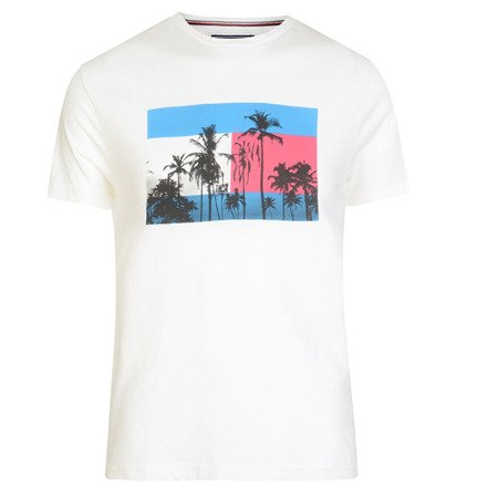 T-shirt TOMMY HILFIGER Flag Photo Print Tee White